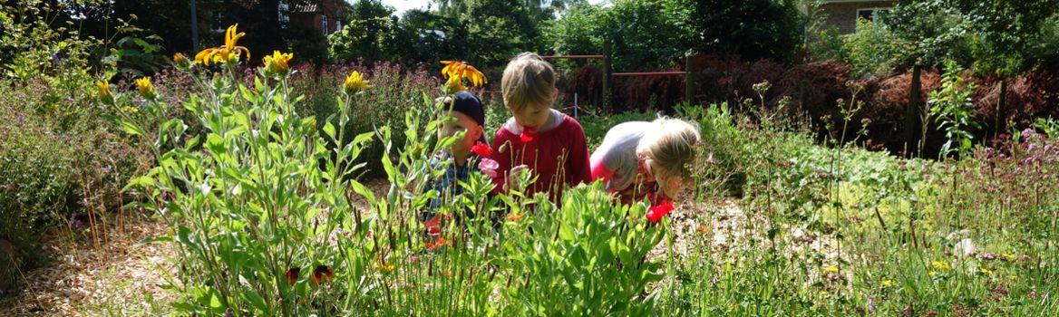 Garten der Kinderstube Brekendorf